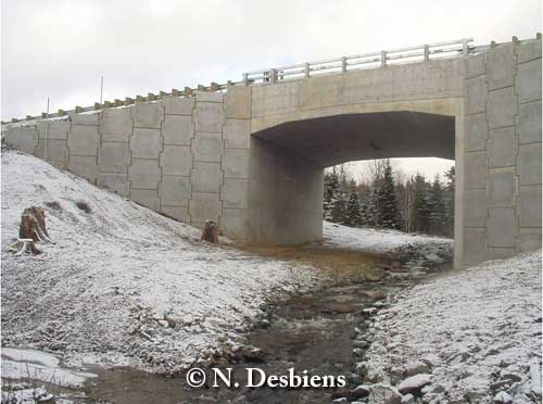 Quebec underpass, accommodating both stream and upland for terrestrial wildlife movement. Photo credit N. Desbiens