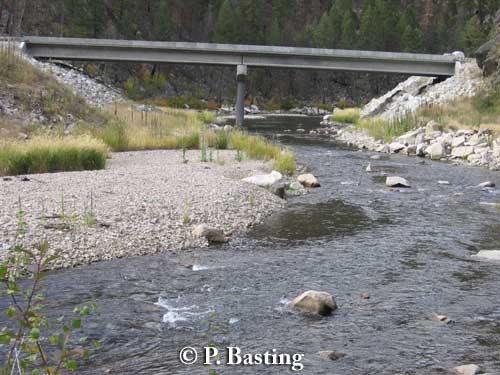 A wildlife passage was created when the plans for this bridge along US 93 in Montana were extended to include upland as well as the river. Wildlife typically use riverine areas for movement pathways, especially in steep terrain as in this picture.