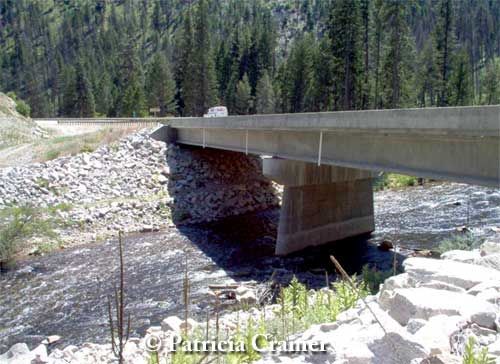 This bridge along US 93 near the town of Sula accommodates both the Bitteroot river and terrestrial wildlife movement along paths in between the rocks. Photo credit: P.Cramer.