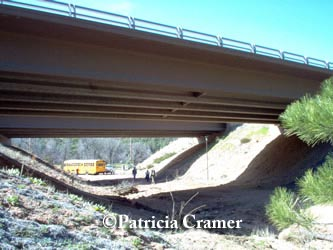 Arizona SR 260 Underpass